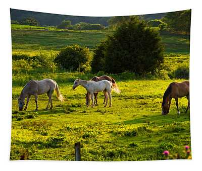 Horses Grazing In Evening Light Tapestry