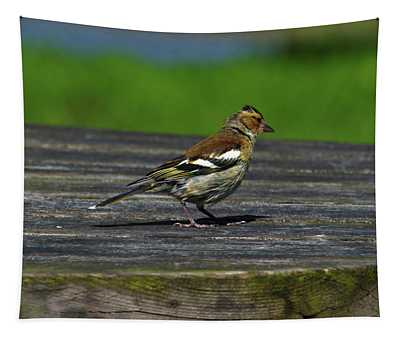 House Finch Tapestry