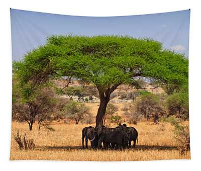 Huddled In Shade Tapestry