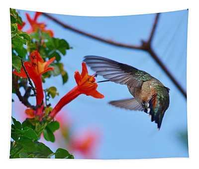 Hummingbird Acrobat II Tapestry