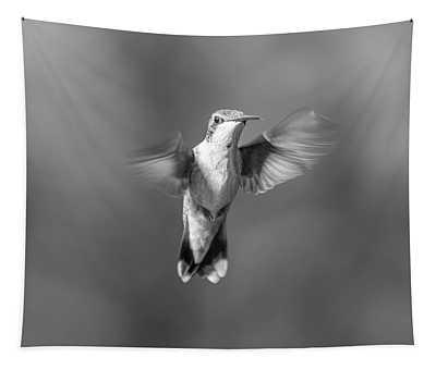 Hummingbird Flight Tapestry