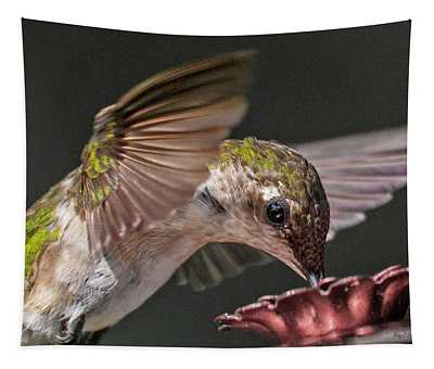 Hummingbird Graceful Little Lady Tapestry