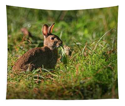Hungry Rabbit Tapestry