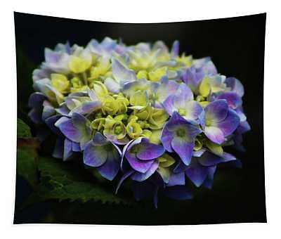 Hydrangea 3705 H_2 Tapestry