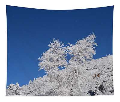 Ice Crystals Ute Pass Cos Co Tapestry