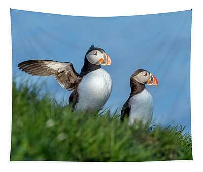 Iceland A World Of Puffins Tapestry