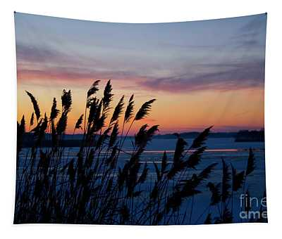 Illinois River Winter Sunset Tapestry