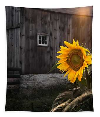 New England Barn Photographs Wall Tapestries