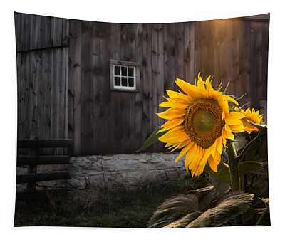 Connecticut Photographs Wall Tapestries