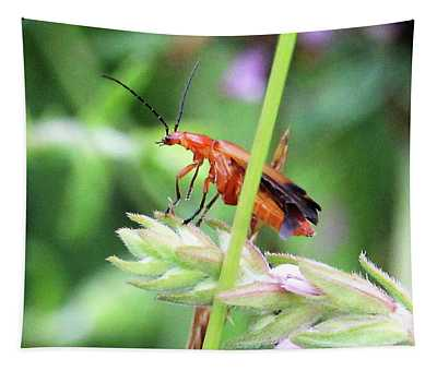 Insect Tapestry