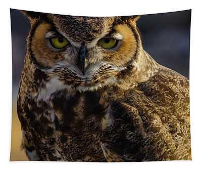 Intense Owl Tapestry