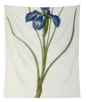 Iris Xyphioides Tapestry