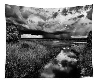 Isolated Shower - Bw Tapestry