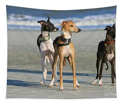 Italian Greyhounds On The Beach Tapestry