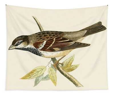 Italian House Sparrow Tapestry