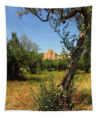 Italy, Olive Trees And An Ancient Abbey Tapestry