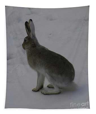 Jack Rabbit Tapestry