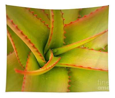 Jagged Aloe Tapestry