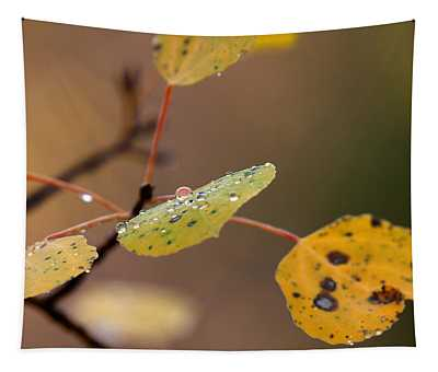 Jewels Of Autumn Tapestry