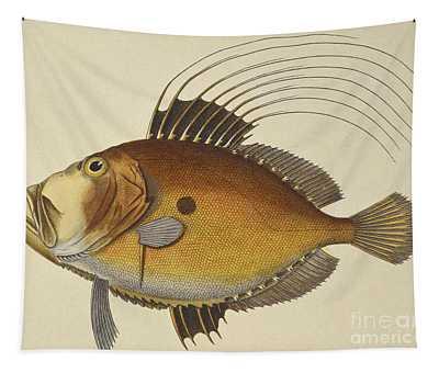 John Dory Tapestry