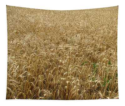 Kansas Wheat Tapestry