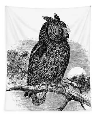 Kennicott's Owl Tapestry