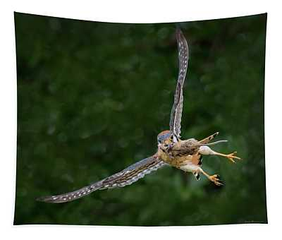 Kestrel With Prey Tapestry