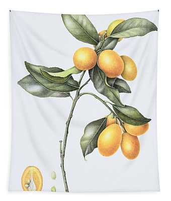 Kumquat Tapestry