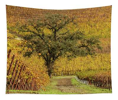 Kunde Vineyards Tapestry