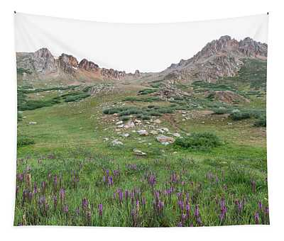 La Plata Peak Tapestry