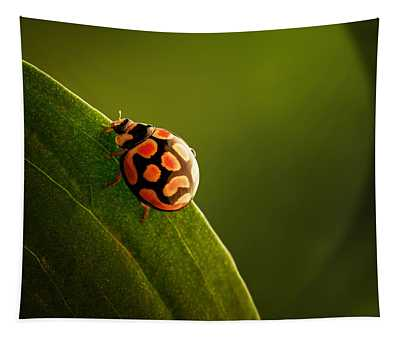 Ladybug  On Green Leaf Tapestry