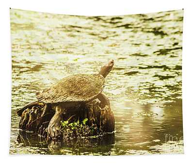 Lake Turtles Tapestry