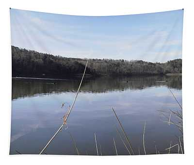 Lake Zwerner Early Spring Tapestry