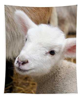 Lamb Tapestry