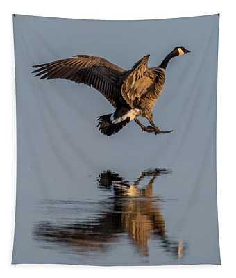 Landing Canadian Goose Tapestry