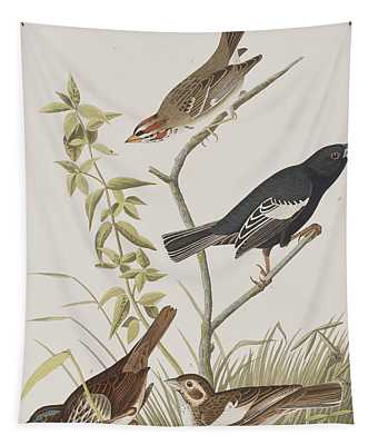 Lark Finch Prairie Finch Brown Song Sparrow Tapestry