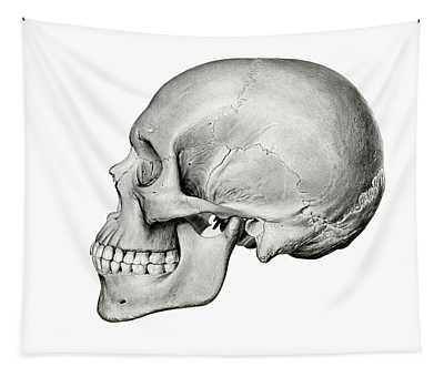Lateral View Of Human Skull Tapestry