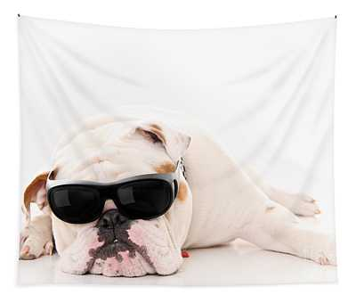 Designs Similar to Lazy But Cool Dog