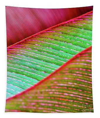 Leaves In Color  Tapestry