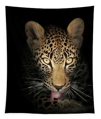 Leopard In The Dark Tapestry