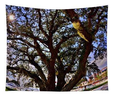 Liberty Oak Harbour Town Hilton Head Sc Tapestry