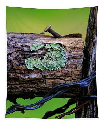 Lichen On Barbed Wire Fence Tapestry