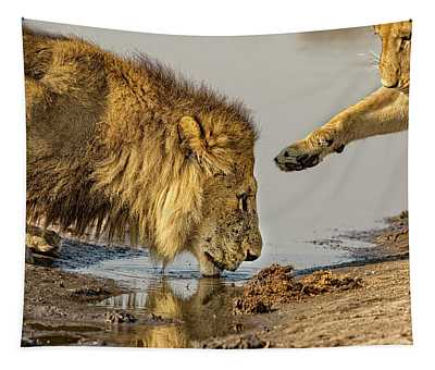 Lion Affection Tapestry