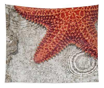 Live Starfish Natural Habitat Tapestry
