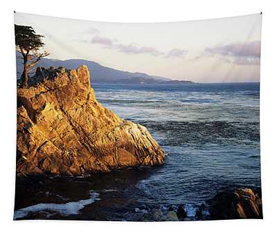 Lone Cypress Tree Tapestry