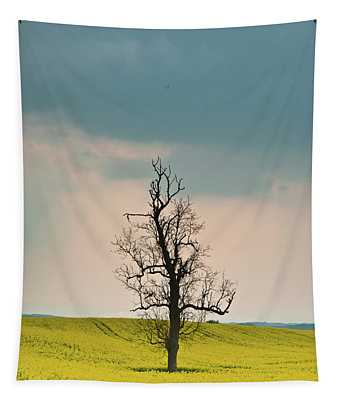 Lone Tree In Rape Field 3 Tapestry