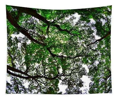 Looking Up The Oaks Tapestry