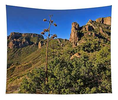 Lost Mine Trail In Big Bend National Park 4 Tapestry
