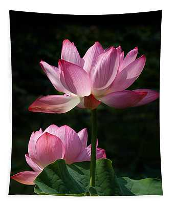 Lotus Beauties--upstaged Dl048 Tapestry