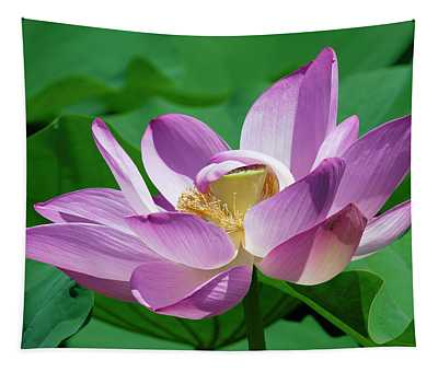 Lotus--center Of Being--protective Covering II Dl0088 Tapestry